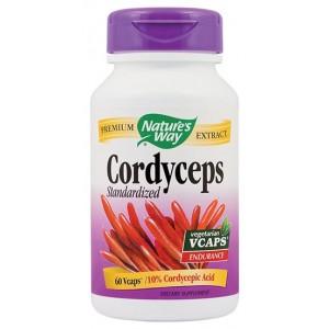 CORDYCEPS SE 500mg
