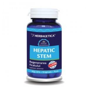 HEPATIC STEM 60 capsule